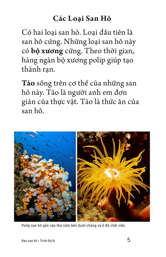Book Preview For Coral Reefs Page 5
