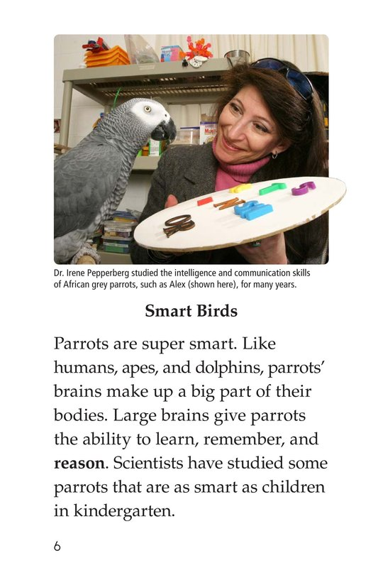 Book Preview For Parrots Page 6