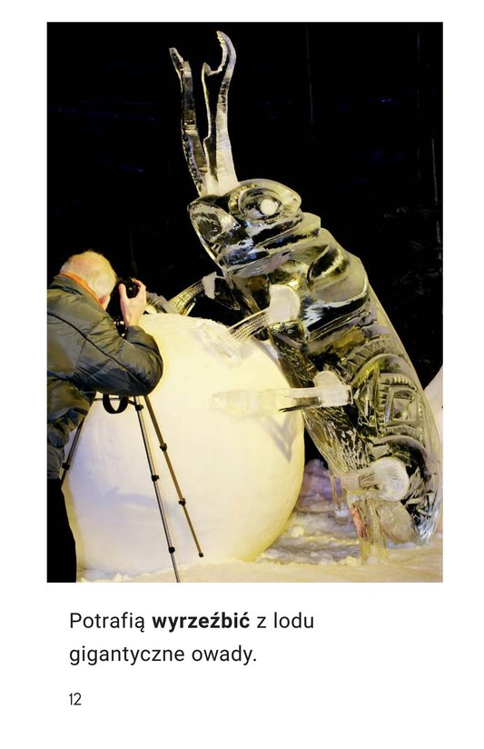 Book Preview For Statues in the Ice Page 12