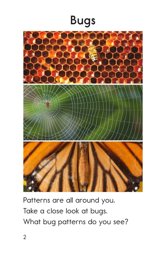 Book Preview For Patterns Page 2