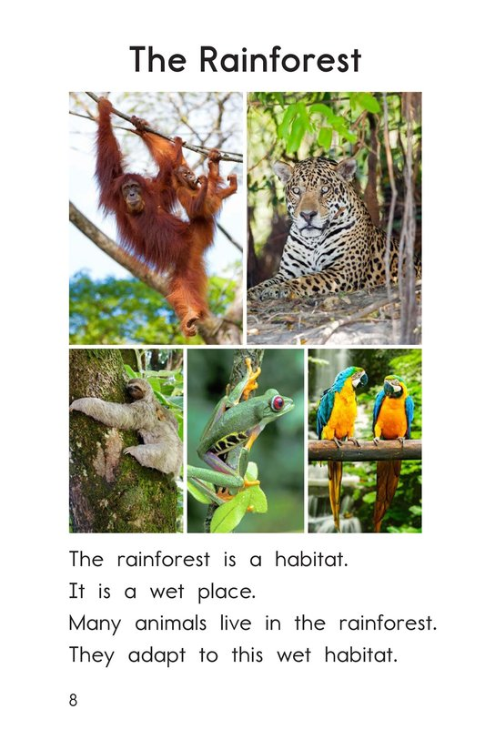 Book Preview For Animal Habitats Page 8