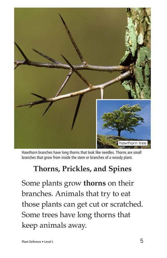 Book Preview For Plant Defenses Page 5