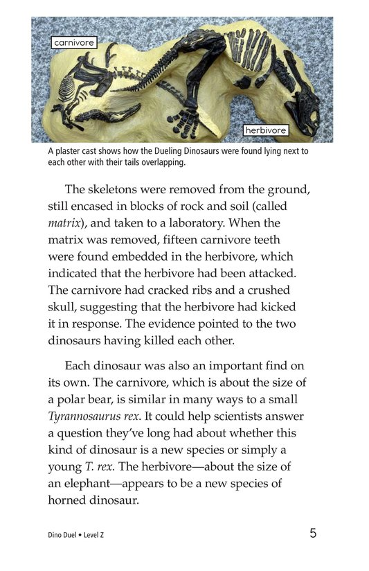 Book Preview For Dino Duel Page 5