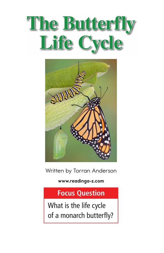 Book Preview For The Butterfly Life Cycle Page 1