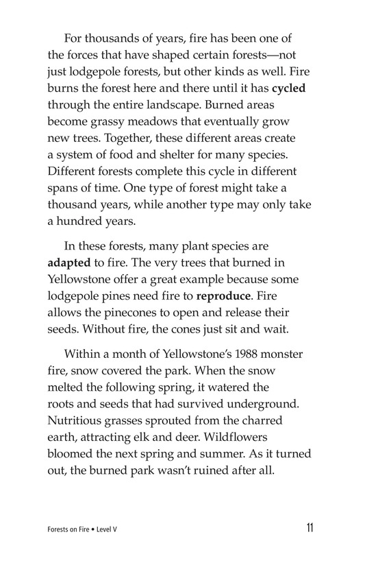 Book Preview For Forests on Fire Page 11