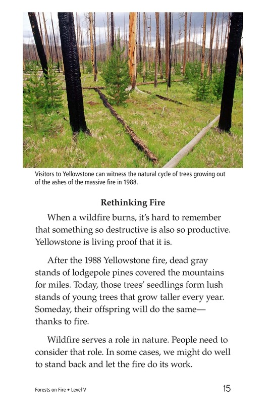 Book Preview For Forests on Fire Page 15