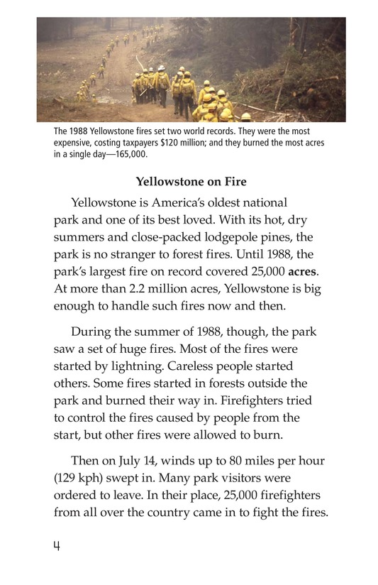 Book Preview For Forests on Fire Page 4