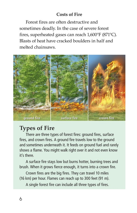 Book Preview For Forests on Fire Page 6