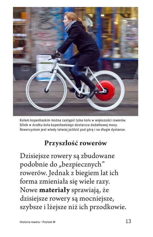 Book Preview For History of the Bicycle Page 13