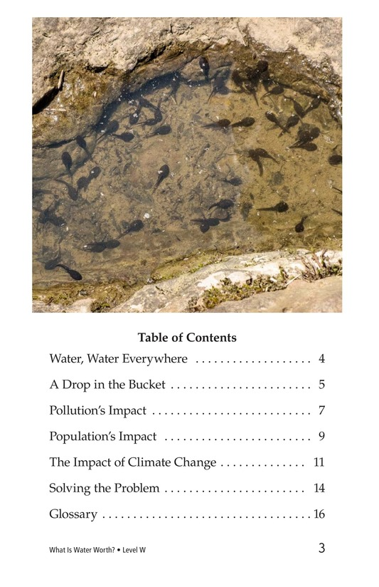 Book Preview For What Is Water Worth? Page 3