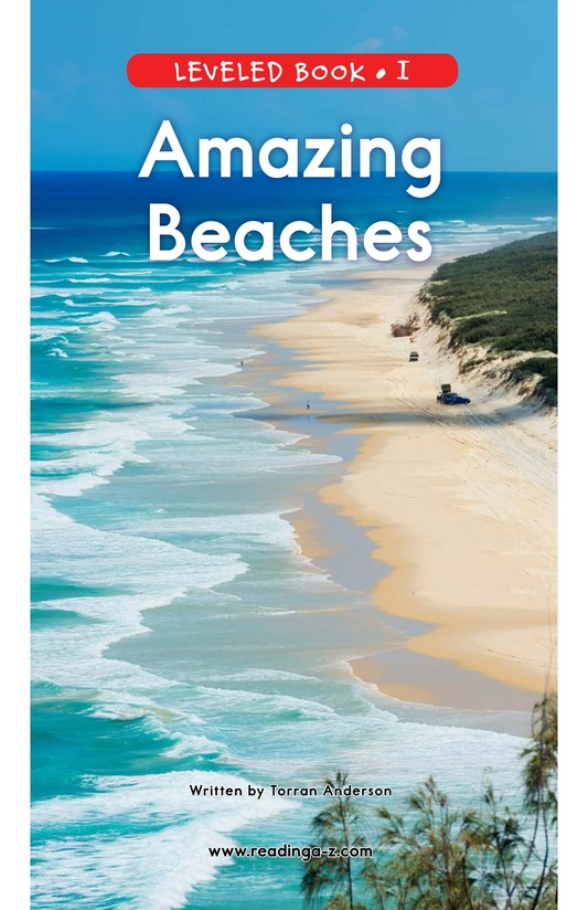 Book Preview For Amazing Beaches Page 1