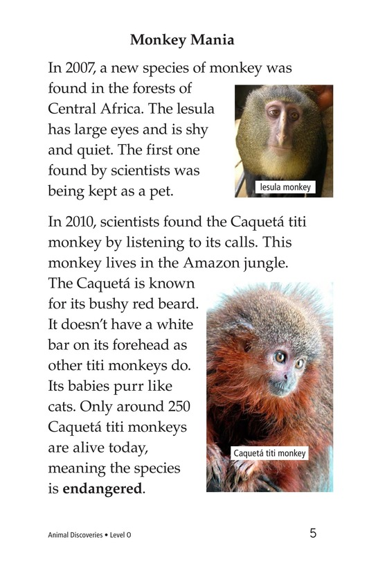Book Preview For Animal Discoveries Page 5