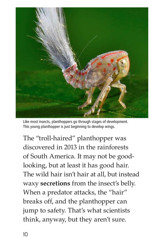 Book Preview For Animal Discoveries Page 10