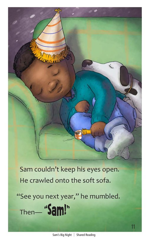 Book Preview For Sam's Big Night Page 11