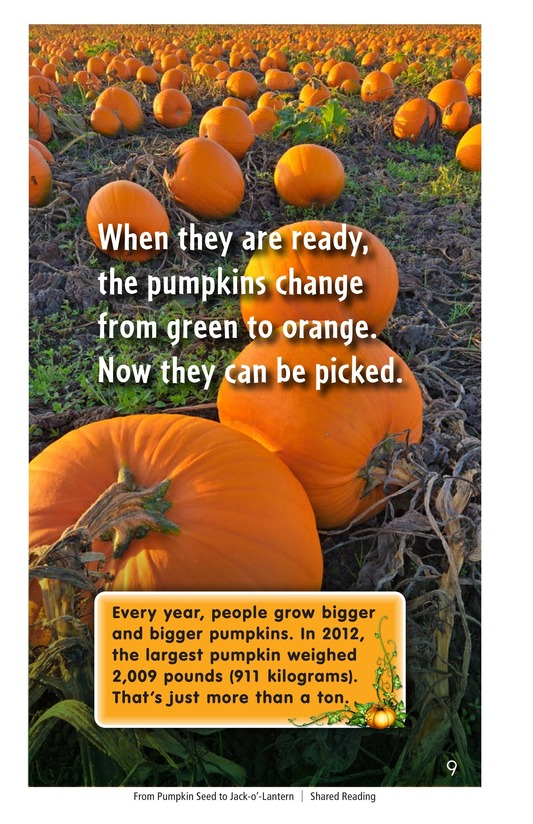Book Preview For From Pumpkin Seed to Jack-o'-Lantern Page 9