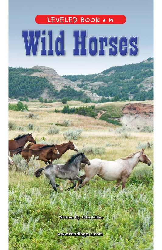 Book Preview For Wild Horses Page 1