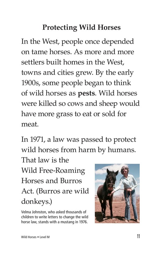 Book Preview For Wild Horses Page 11