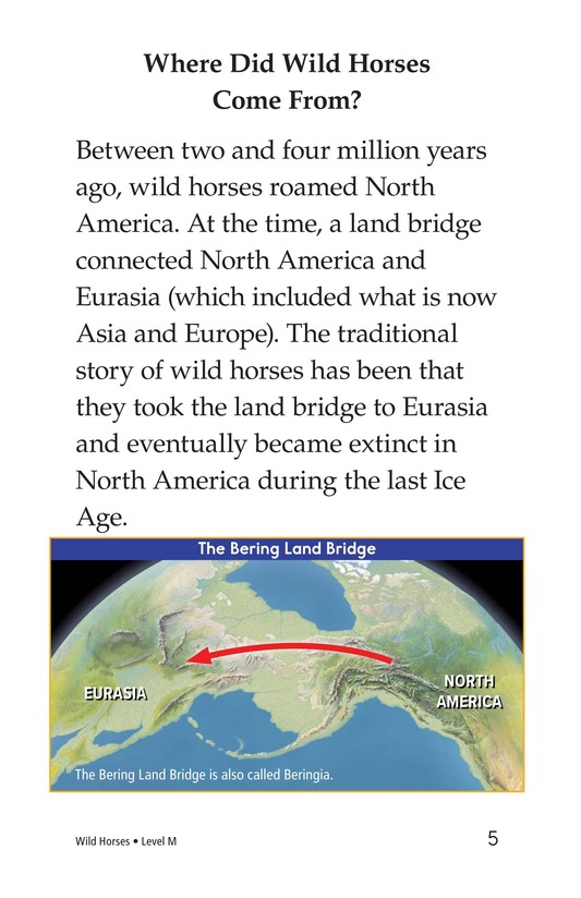 Book Preview For Wild Horses Page 5
