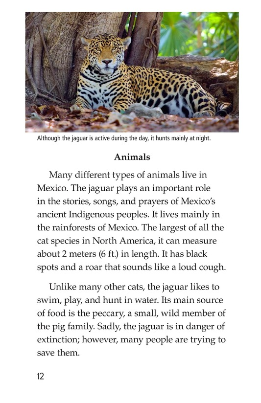 Book Preview For Mexico Page 12