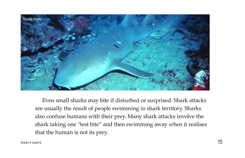 Book Preview For Sharks Page 15