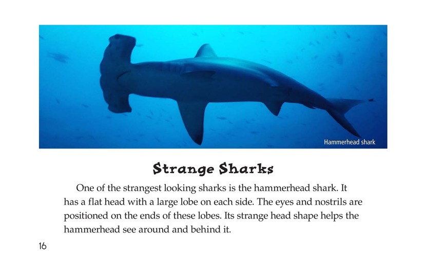 Book Preview For Sharks Page 16