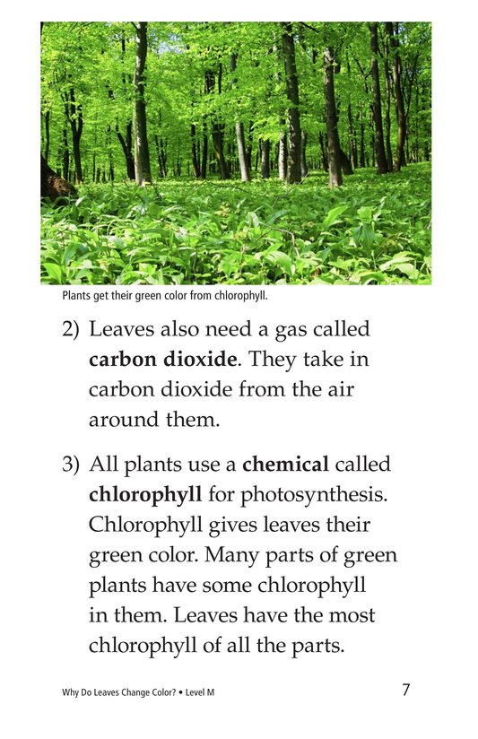 Book Preview For Why Do Leaves Change Color? Page 7