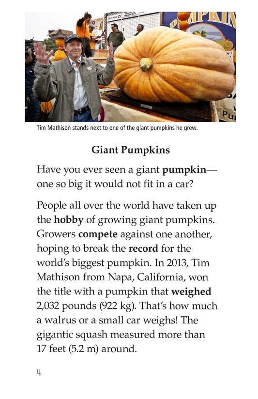Book Preview For Giant Pumpkins Page 4