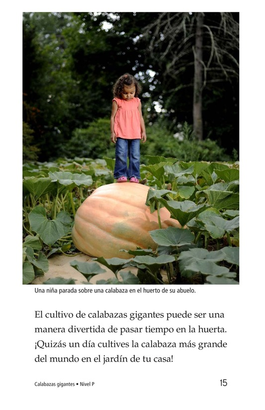 Book Preview For Giant Pumpkins Page 15
