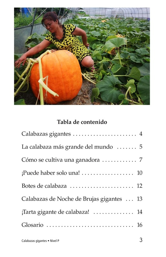 Book Preview For Giant Pumpkins Page 3