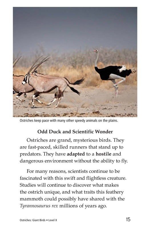 Book Preview For Ostriches: Giant Birds Page 15