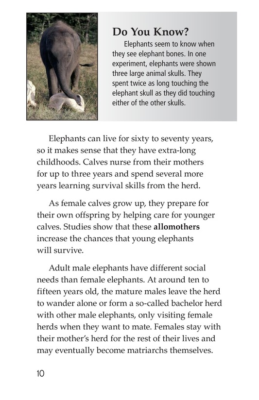 Book Preview For Elephants: Giant Mammals Page 10