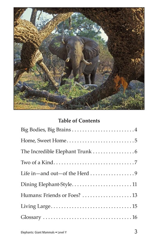 Book Preview For Elephants: Giant Mammals Page 3