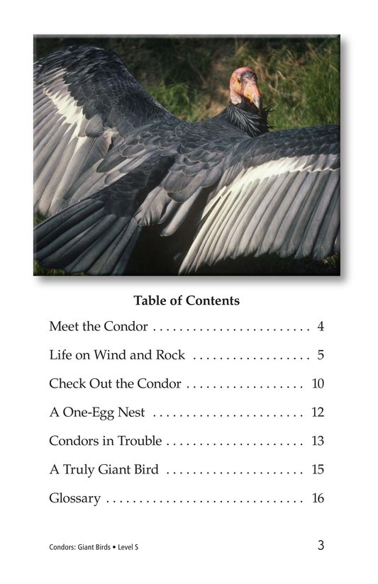 Book Preview For Condors: Giant Birds Page 3