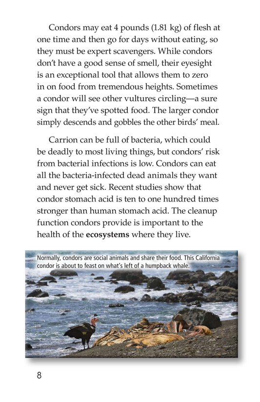 Book Preview For Condors: Giant Birds Page 8