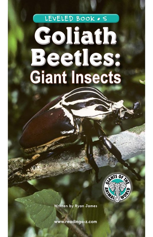 Book Preview For Goliath Beetles: Giant Insects Page 1