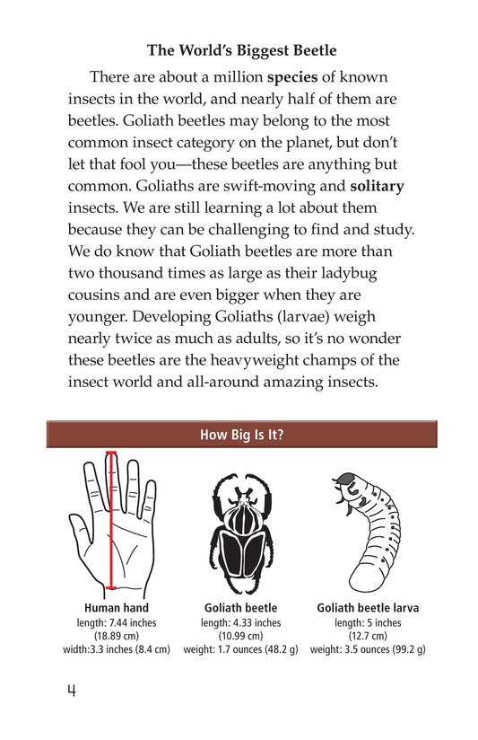 Book Preview For Goliath Beetles: Giant Insects Page 4