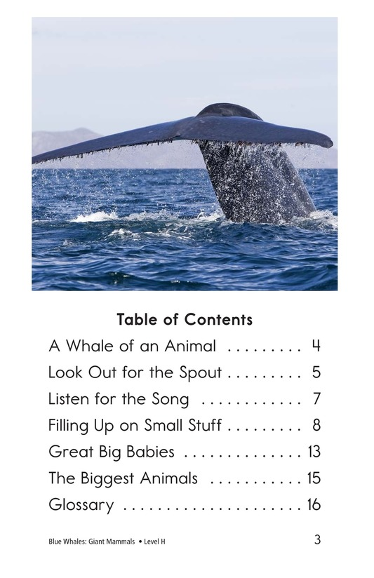 Book Preview For Blue Whales: Giant Mammals Page 3