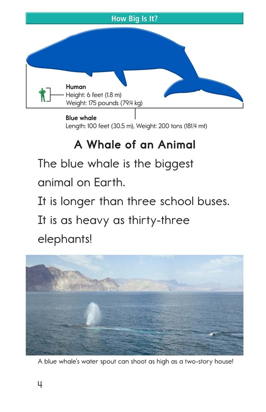 Book Preview For Blue Whales: Giant Mammals Page 4