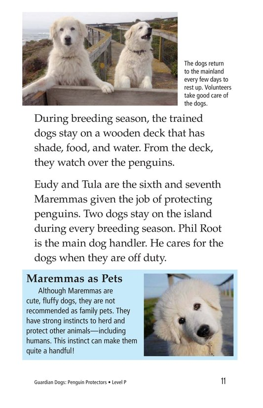 Book Preview For Guardian Dogs: Penguin Protectors Page 11