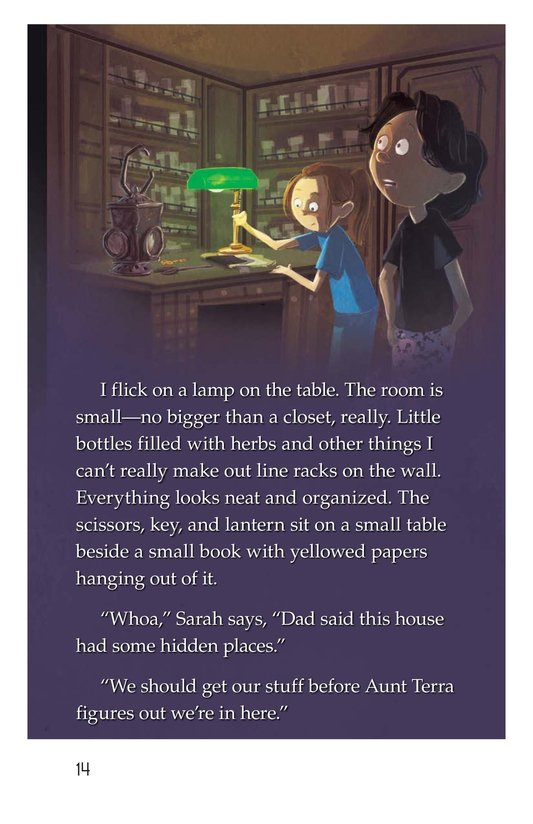 Book Preview For The Hidden Room Page 14