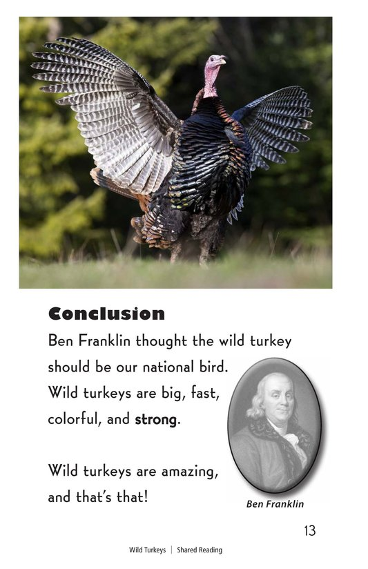 Book Preview For Wild Turkeys Page 13