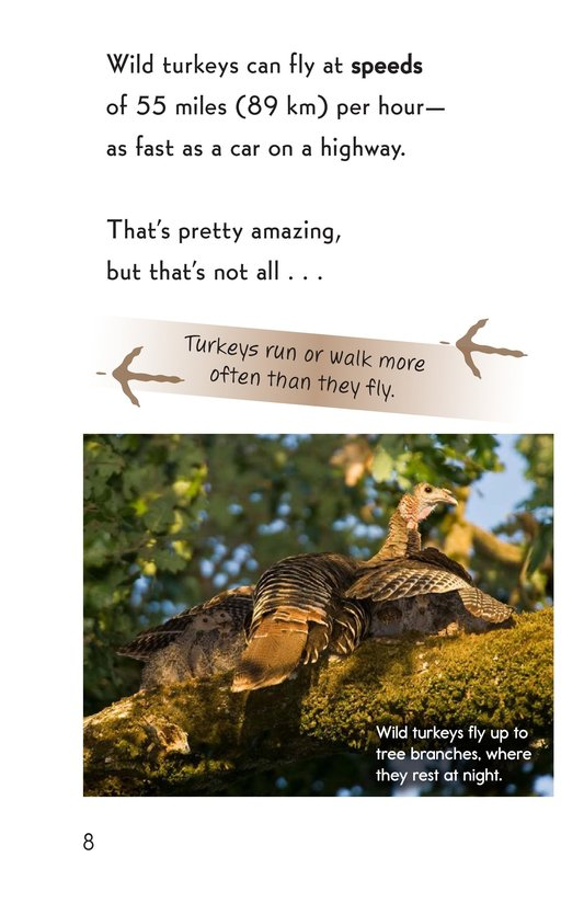 Book Preview For Wild Turkeys Page 8
