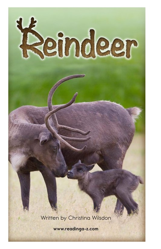 Book Preview For Reindeer Page 2