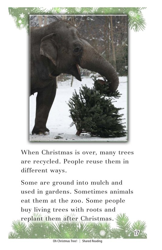 Book Preview For Oh Christmas Tree! Page 17