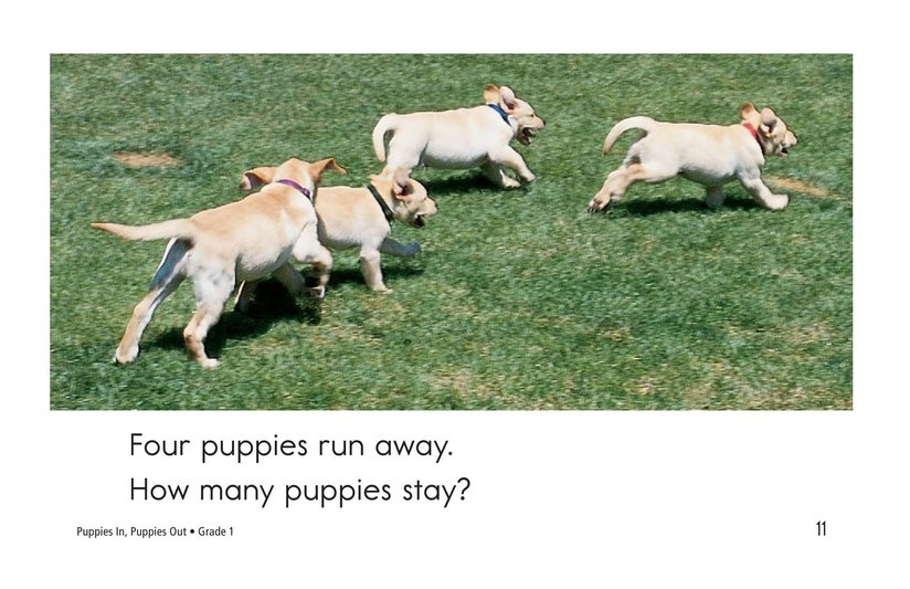 Book Preview For Puppies In, Puppies Out Page 11
