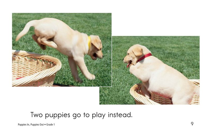 Book Preview For Puppies In, Puppies Out Page 9