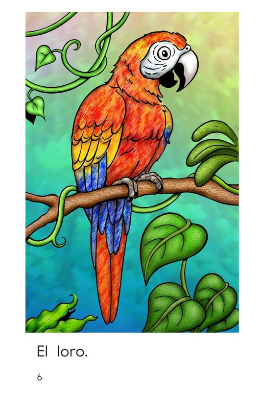 Book Preview For Rainforest Animals Page 6