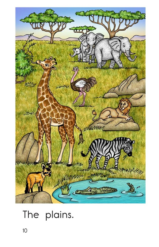 Book Preview For Plains Animals Page 10
