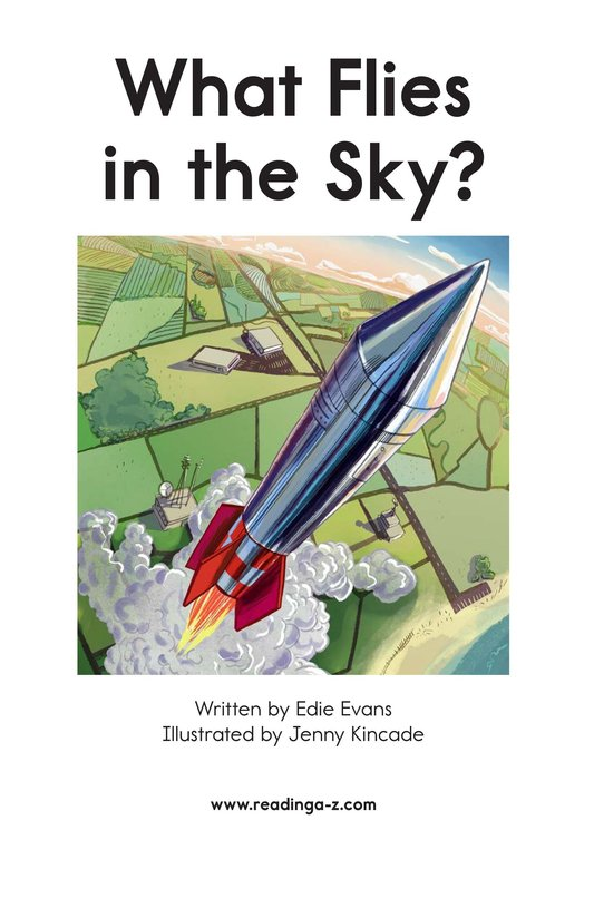 Book Preview For What Flies in the Sky? Page 2