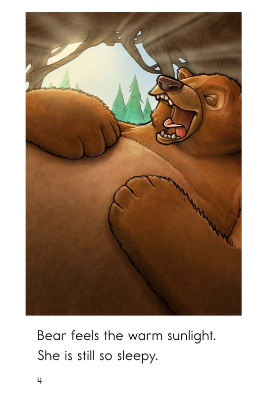 Book Preview For Wake Up, Bear! Page 4